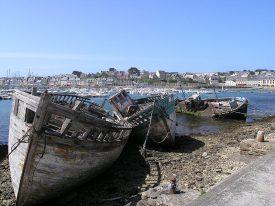 Wracks im Hafen von Camaret