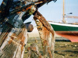 Im Hafen von Camaret
